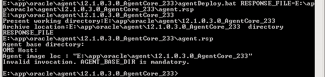 Agent 12c Deploy Windows 08