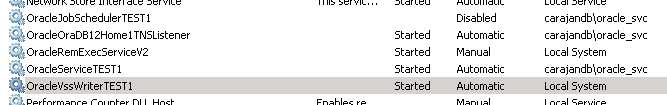 05 OracleVssWriter